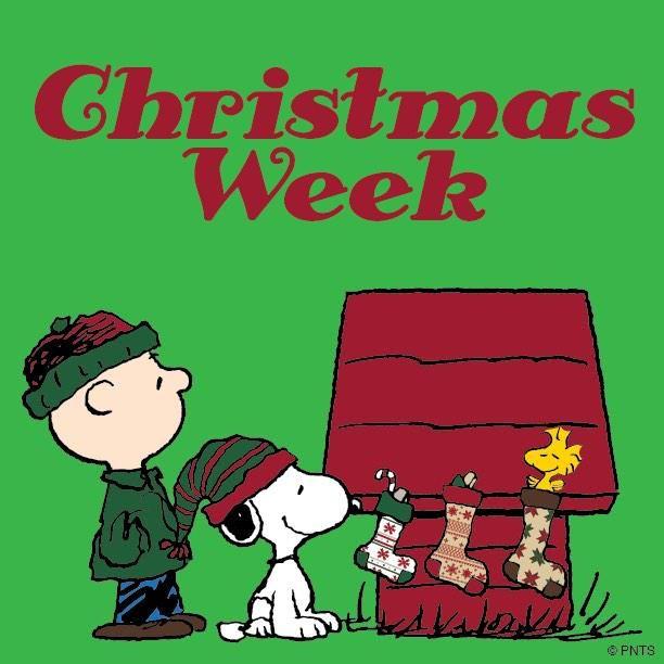 December 23rd to December 29th (feat. SCG IQ)